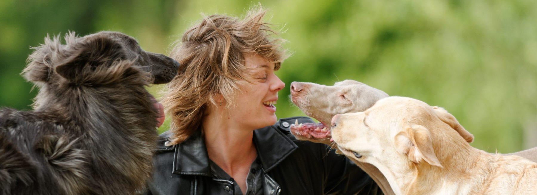 Éducateur canin à domicile
