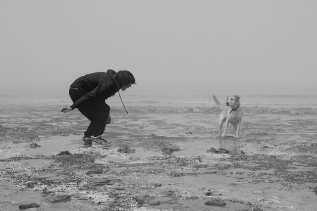 Educateur canin Arras